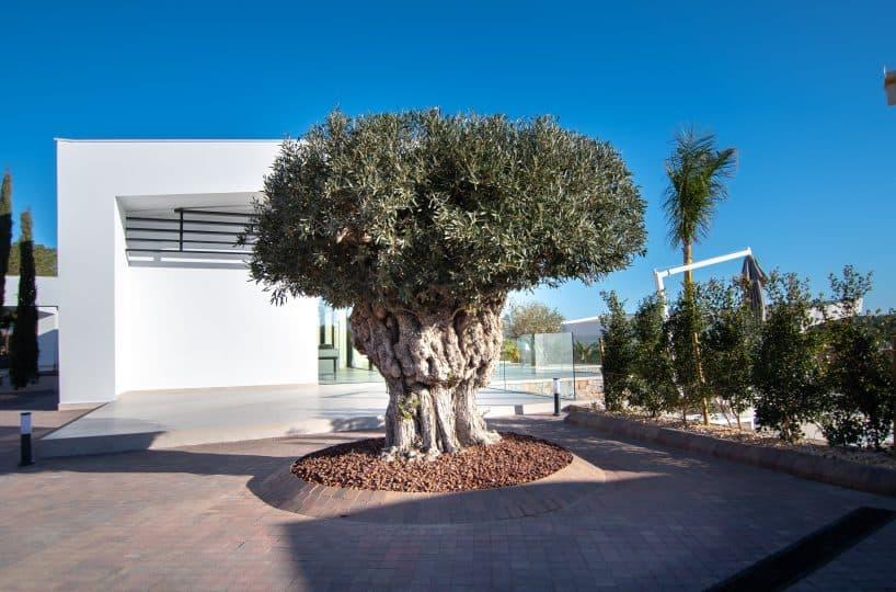 Mimosa-26-luxury-villa-on-las-colinas-golf-country-club-costa-blanca-by-geosem-alicante-27